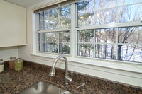 Kitchen Window Wooded View