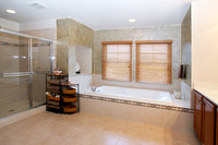 Master Bath - Jetted Tub & Shower
